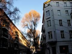 Abendsonne im Klausenerplatz-Kiez