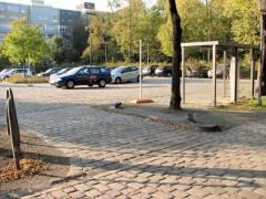 (Einst kostenpflichtiger) Parkplatz am Schloßpark