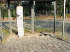 ein Parkgebührautomat hat sich bereits verflüchtigt