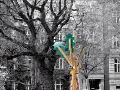 Vom Charlottenburger Stadtrat neu gepflanzte und frisch rausgeputzte Bäume auf dem Klausenerplatz / Februar 2015