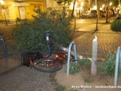 Umgestürzter Baum in der Danckelmannstraße / Foto © S. Wolter