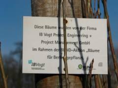 Baumspende im Schloßpark