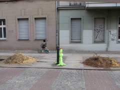 Arbeiten des Grünflächenamts Charlottenburg-Wilmersdorf - Entfernung von Baumstümpfen in der Seelingstraße