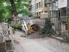 Umgestürzter Baum an der Schloßstraße 18/18a