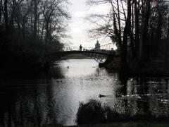 Brücke im Schloßpark