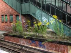 Alter Bahnsteig außer Betrieb 2009 (HDR-Foto)