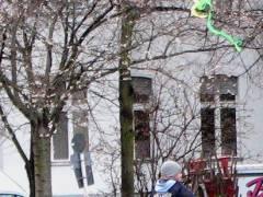 Drachen überm Klausenerplatz - 01.02.2008