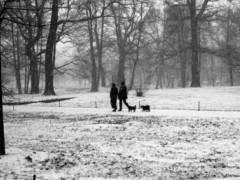 Winter im Schloßpark - © Erika Schneider