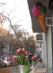 Frühlingsboten, Eis und Blumen - vor dem Fedora in der Nehringstraße