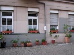 Schönste Hausfront des Kiezes in der Seelingstraße
