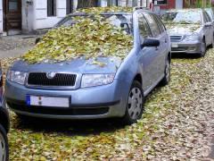 Herbstlaub auf den Straßen