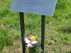 Blumen an der Gedenktafel für einen zu Kriegsende ermordeten 17jährigen Deserteur / Mai 2015
