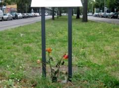 Blumen an der Gedenktafel für einen zu Kriegsende ermordeten 17jährigen Deserteur / September 2015