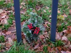 Blumen an der Gedenktafel für einen zu Kriegsende ermordeten 17jährigen Deserteur / Dezember 2015
