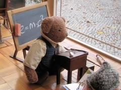 Die Bärenschüler am Klausenerplatz sind fit