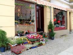 """Doppel-Eröffnung in der Danckelmannstraße -  die """"Blumen Idylle"""" und """"Mode´ria Kerstin"""""""