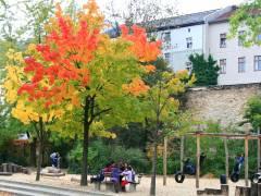 Ein schöner Herbsttag im Schulhof der Nehring-Grundschule