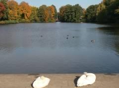 Herbstsonne genießen im Schloßpark Charlottenburg