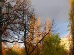 Stadtnatur - Herbststimmung auf dem Klausenerplatz  06.11.2007