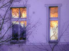 Hinterhof im Klausenerplatz-Kiez
