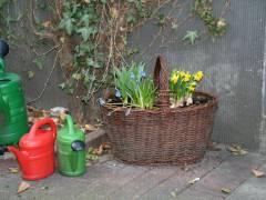 Leben und Farben im Hinterhof
