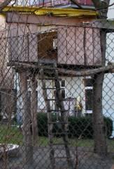 Vorher - Nachher? Keine Bange! Nur ein Baumhaus in einem kinderfreundlichen Kiez.