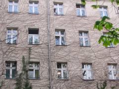 Auch Häuser leben - Leben in und an einem Haus in der Danckelmannstraße