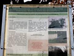 Infoschild zum Baum-Forschungsprojekt im Schloßpark Charlottenburg