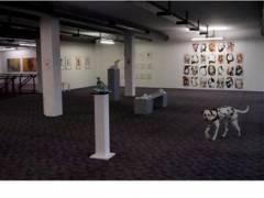 Ausstellungssituation 1. Stock