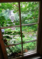 Strahlend frische Aussichten aus dem Parkhausfenster auf den Lietzenseepark