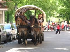 Pferdekutsche vor dem Klausenerplatz - Mai 2011