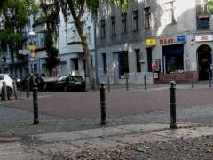 Polleritis an der Ecke Nehring-/Seelingstraße