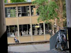 Hinterhof-Einblicke
