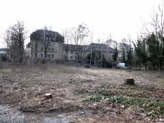 Unbebautes Gelände an der Pulsstraße 13 und Baumfällungen (März 2017)