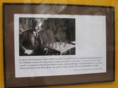 Schachladen Laskers
