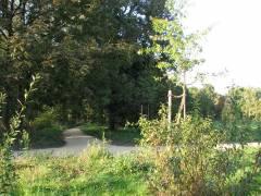 Neuer Weg am Belvedere