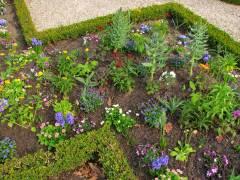 Frühlingsbepflanzung der Stiftung Preußische Schlösser und Gärten (SPSG) im Schloßpark Charlottenburg 2013 (HDR-Foto)