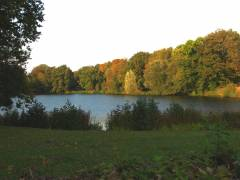Herbst 2011 im Schloßpark (HDR-Foto)