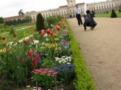 Besucher aus der ganzen Welt in einem freien Park
