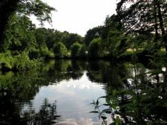 Sommer am See im Schloßpark Charlottenburg