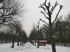 Schloßpark Charlottenburg - Januar 2013