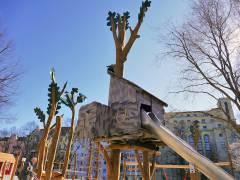 Baumhaus in den neuen Bäumen ('populus schulteri') auf dem Klausenerplatz