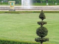 Wasserspiele und geformte (gebändigte!) Natur im barocken Parterre