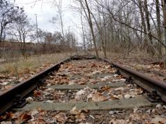 Renaturierte Gleisanlage
