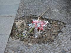 Gehwegschaden in der Nehringstraße