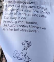 Hundebetreuung wird angeboten