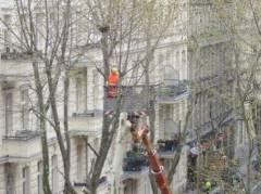 Baumarbeiten in der Danckelmannstraße