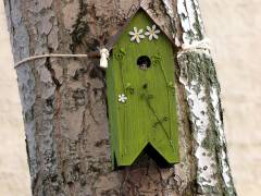 Ein Häuschen für den Vogel - Glück und Freude für den Kiez