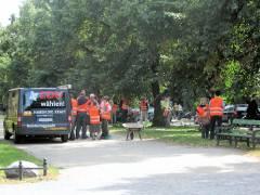 Wildwuchs-Aktion der CDU auf dem Mittelstreifen der Schloßstraße