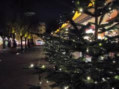 Weihnachtsglanz wartet auf Besucher